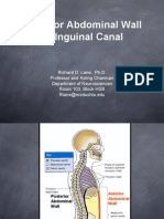 Anterior Abdominal Wall and Inguinal Canal