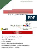 Processos e métodos de protecção fitossanitária