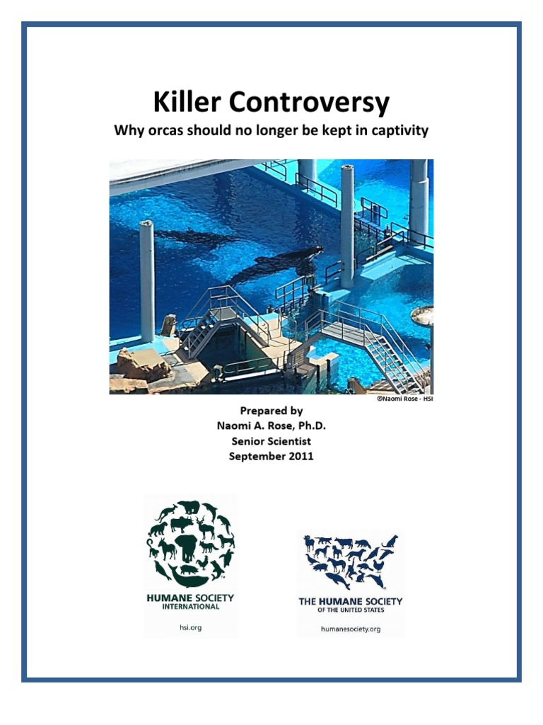 should orcas be kept in captivity 11 facts everyone should know about orca captivity orcas kept in cramped spaces can develop violent scientists say orcas in captivity usually only live up.