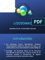 presentacion lisosomas bn