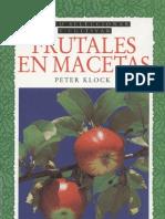 Plantas - Frutales en Macetas