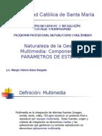 PARAMETROS_ESTETICA_MULTIMEDIAc