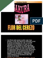 Sakura-flo Del Cerezo