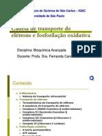 CTE-e-fosforilação-oxidativa