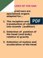 EAR 2005 TXT