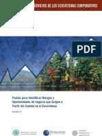 Estudio Sobre Los Servicios de Los Ecosistemas Corporativos - Pautas Para Identificar Riesgos y des de Negocio Que Surgen a Partir Del Cambio en El Ecosistema