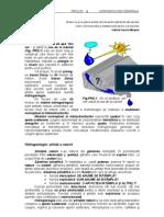 PROLOG HidrogeologieGenerala
