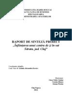 Raport de Sinteza (Exemplu)