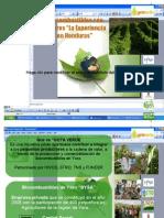 Proyecto Gota Verde 2010