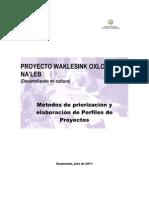 Manual Elaboracion Perfiles Proyectos 27 de JULIO 2011