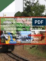 Textos sobre o Estado de Mato Grosso do Sul 5º Ano A Escola Estadual Irman Ribeiro de Almeida Silva