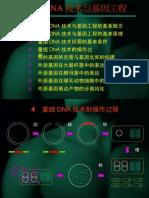 重组DNA技术与基因工程(4-5)