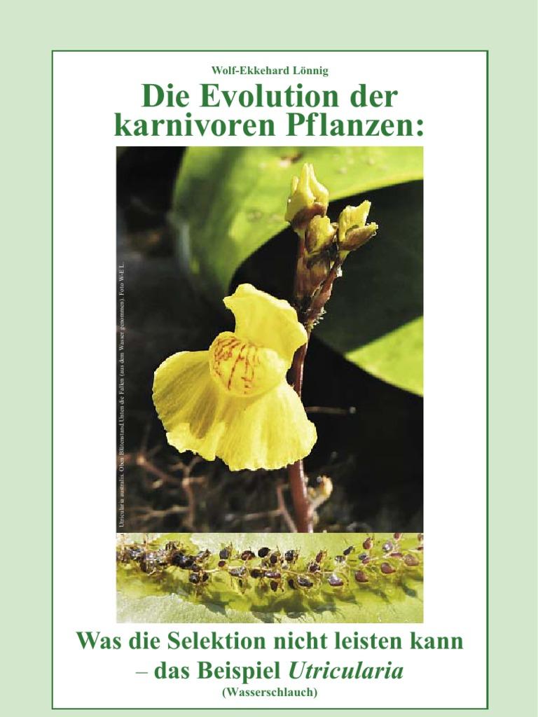 Wolf-Ekkehard Lönnig (2011)-Evolution der karnivoren Pflanzen - Was ...