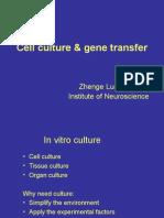genetransfercourse10-25