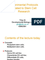 Lecture for Graduate Students 2004 Stem Cell Protocols 1