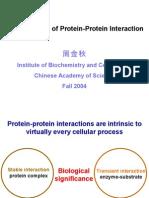 P-P Interaction (ION)
