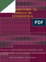 Citogenetica Nueva