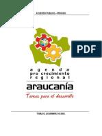 Agenda Pro-Crecimiento IX Región