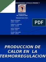 Product Ores de Calor3