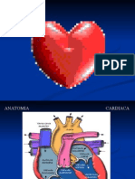 Electrofisiologia Cardiaca 5ta Clase