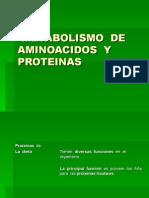 Metabolismo de Aminoacidos y Proteinas