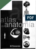 Medicina - Anatomia Atlas - Parramon
