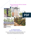 The relationship between Urban Forestry and Poverty Alleviation