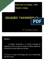 AULA COLEÇÃO TAXONÔMICA