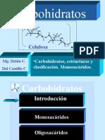 Monosacáridos-FMH-CH