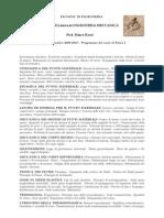programma_corso_Fisica-I_ROSSI_2009-10