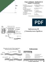 Teórico - Antifúngicos Sistémicos - 2005