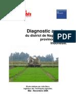 Rapport Diagnostic Agraire Final