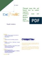 The Pundit - 2nd Edition - 19 Nov 2007