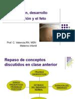 Concepcion Desarrollo Del Embrion CV