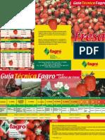 FOLLETO_Fagro_Fresa
