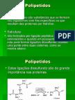 6A-Polipeptidos