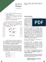 [Resumen] Clase Arreglada Arterias de La Cabeza 09