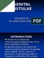 Genital Fistulae