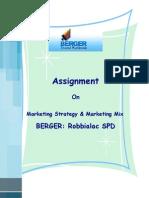 Marketing Strategy and Marketing Mix of Berger