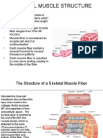 Physiology Slide #1