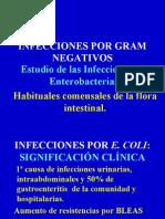 26-10 Enterobacterias-07