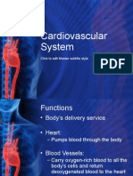 44437979 Cardiovascular System Notes[1]