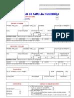 Impreso solicitud+renovación Título Familia Numerosa