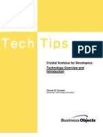 Crystal Xcelsius Developer White Paper