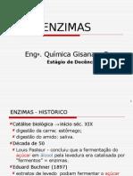 enzimas2005