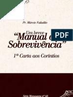Um Breve Manual de Sobrevivencia 68