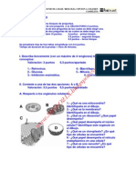 Biologia Selectividad Examen 4 Resuelto Castilla La Mancha Www.siglo21x.blogspot