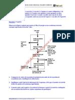 BIOLOGIA-SELECTIVIDAD-EXAMEN 10 RESUELTO-CATALUÑA-www.SIGLO21X.blogspot