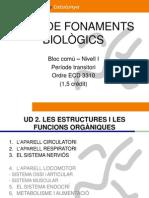 Bloc comú I-Fonaments Biològics-UD2 I