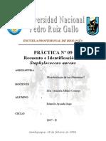 Microbiologia de Alimentos:Practica nº 09-Recuento e identificacion de Staphylococcus aureus